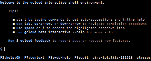 GCloud Interactive Shell